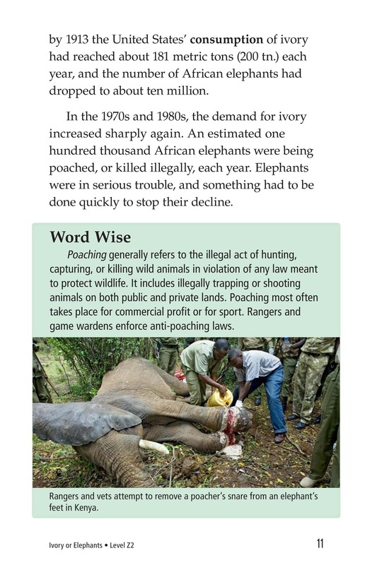 Book Preview For Ivory or Elephants Page 11