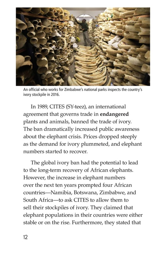 Book Preview For Ivory or Elephants Page 12