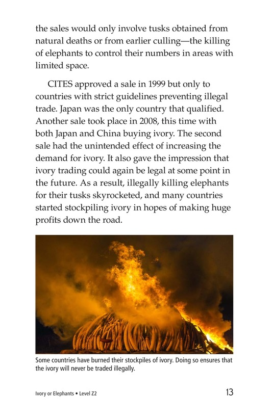 Book Preview For Ivory or Elephants Page 13