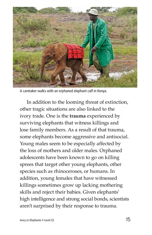Book Preview For Ivory or Elephants Page 15