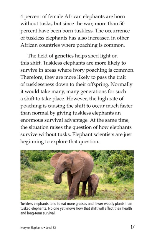 Book Preview For Ivory or Elephants Page 17