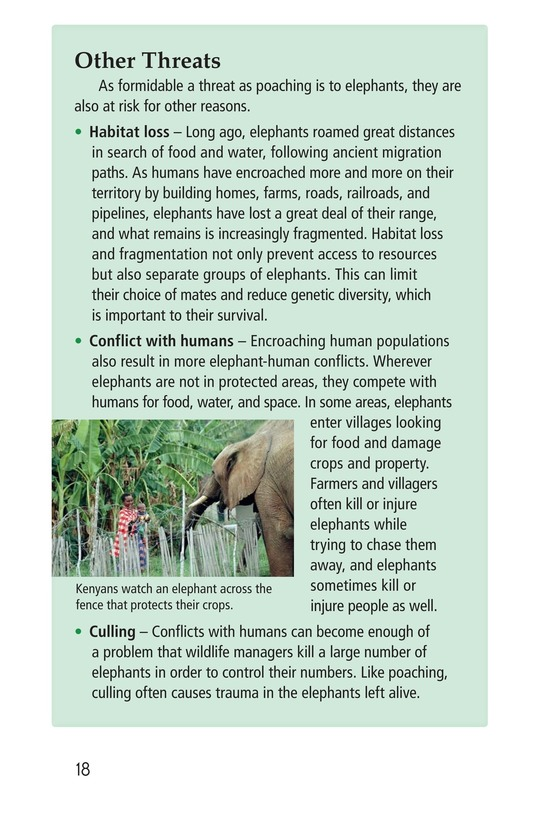 Book Preview For Ivory or Elephants Page 18