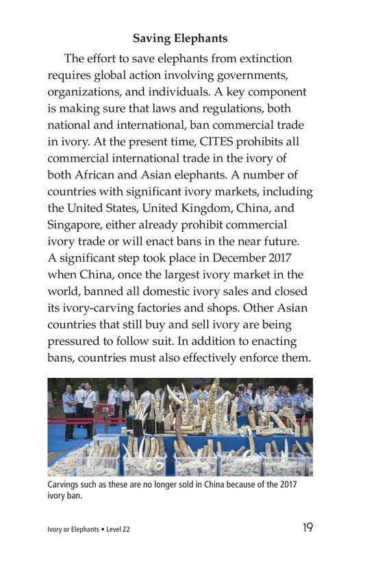 Book Preview For Ivory or Elephants Page 19