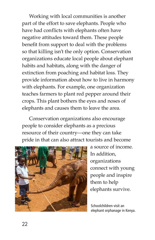 Book Preview For Ivory or Elephants Page 22