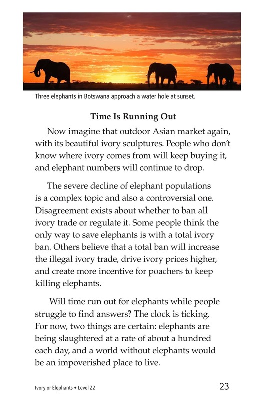Book Preview For Ivory or Elephants Page 23