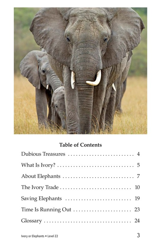 Book Preview For Ivory or Elephants Page 3