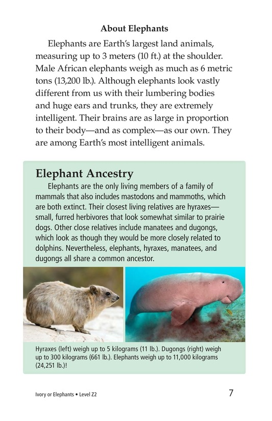 Book Preview For Ivory or Elephants Page 7