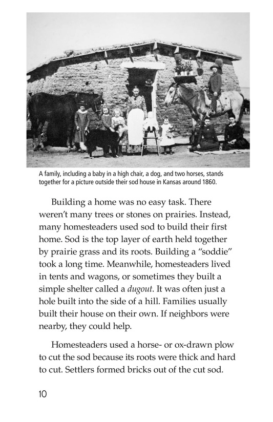Book Preview For The Lives of Homesteaders Page 10