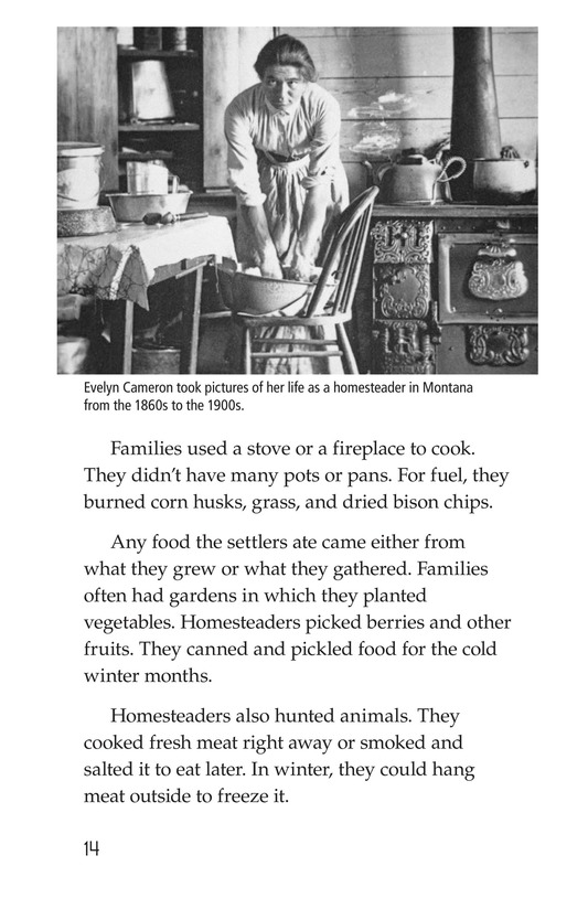 Book Preview For The Lives of Homesteaders Page 14