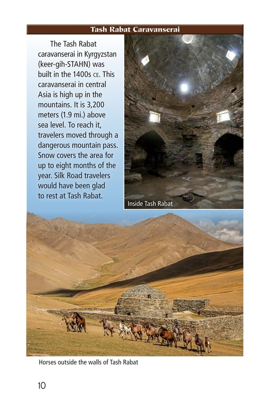 Book Preview For More Than Silk: Ideas, Art, and Disease on the Silk Road Page 10