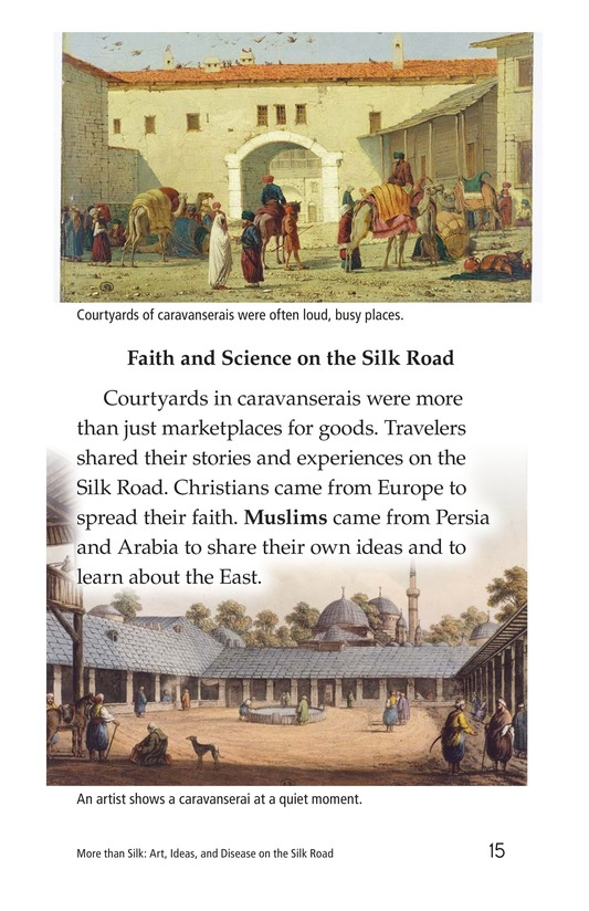 Book Preview For More Than Silk: Ideas, Art, and Disease on the Silk Road Page 15
