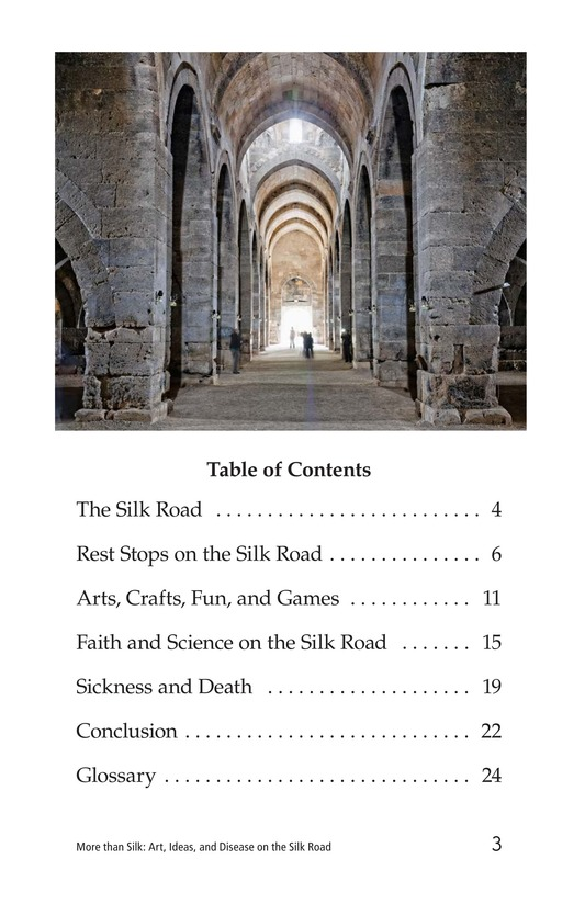 Book Preview For More Than Silk: Ideas, Art, and Disease on the Silk Road Page 3