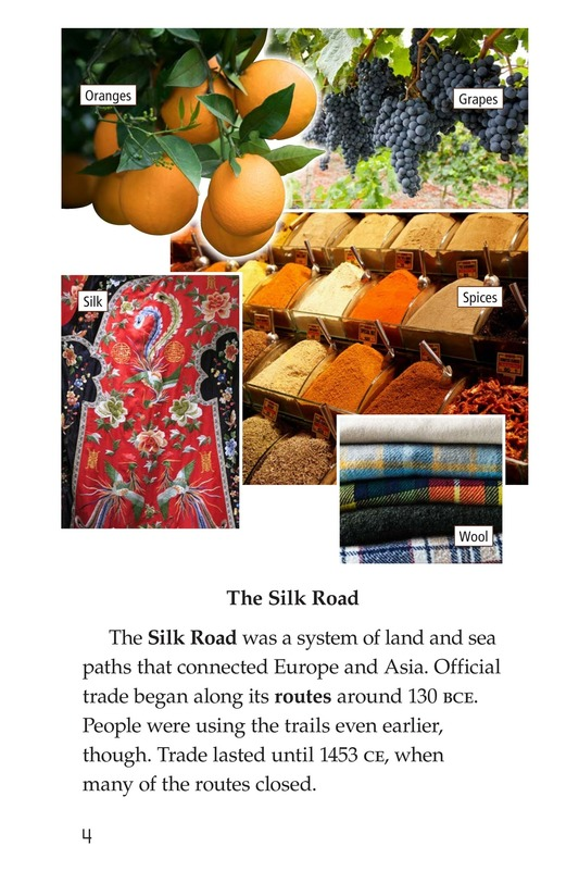 Book Preview For More Than Silk: Ideas, Art, and Disease on the Silk Road Page 4