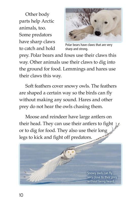 Book Preview For Predators and Prey Page 10