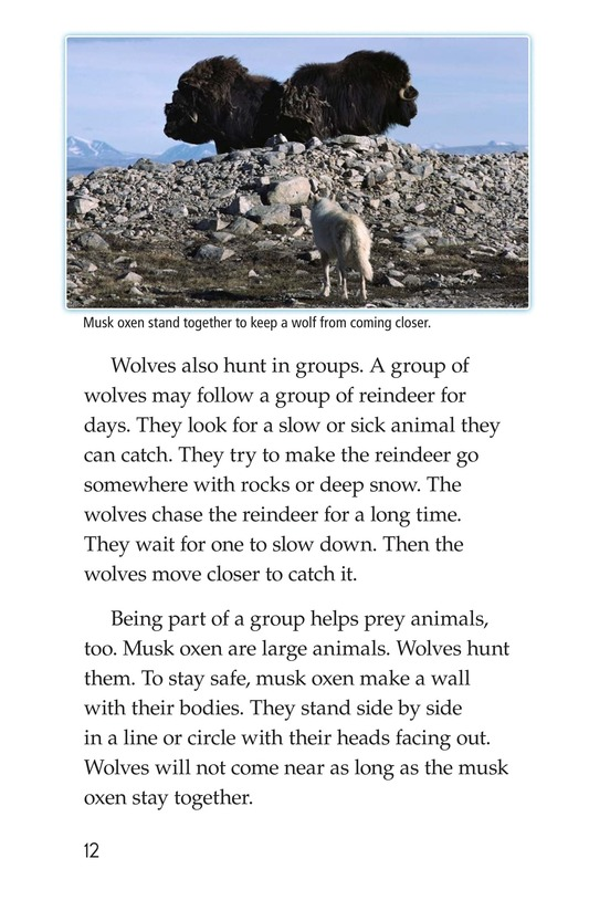Book Preview For Predators and Prey Page 12