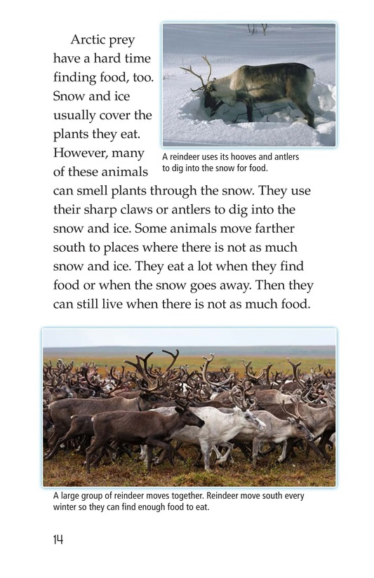 Book Preview For Predators and Prey Page 14