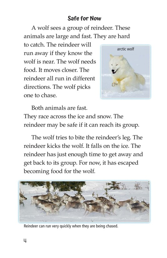 Book Preview For Predators and Prey Page 4