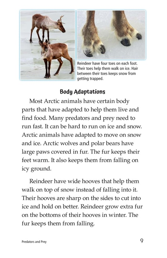 Book Preview For Predators and Prey Page 9