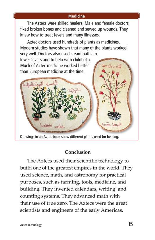 Book Preview For Aztec Technology Page 15