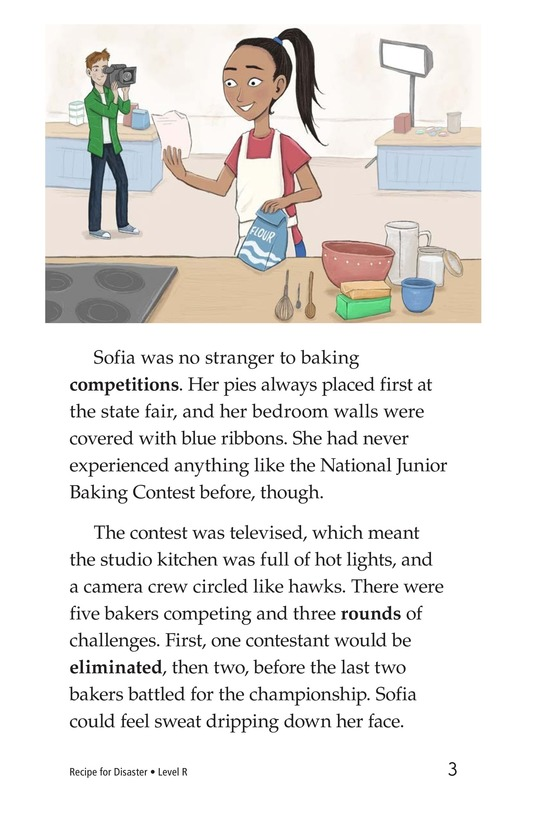Book Preview For Recipe for Disaster Page 3
