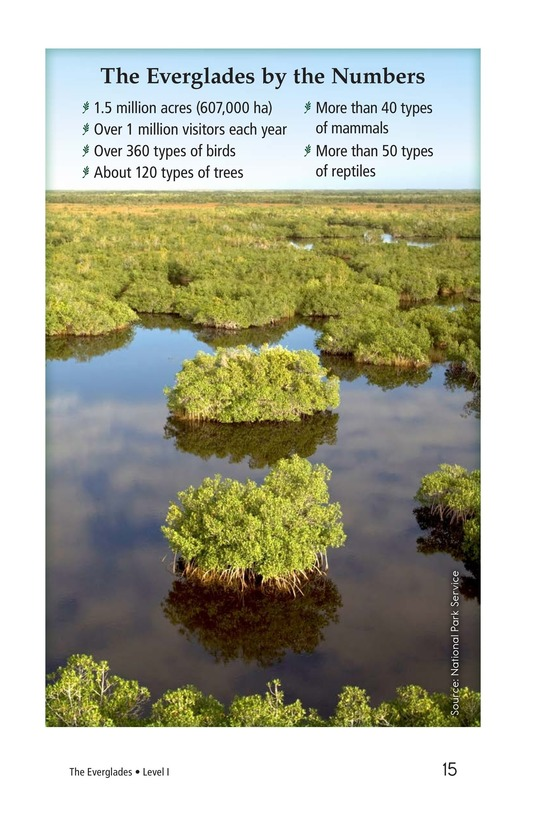 Book Preview For The Everglades Page 15