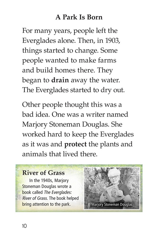 Book Preview For The Everglades Page 10