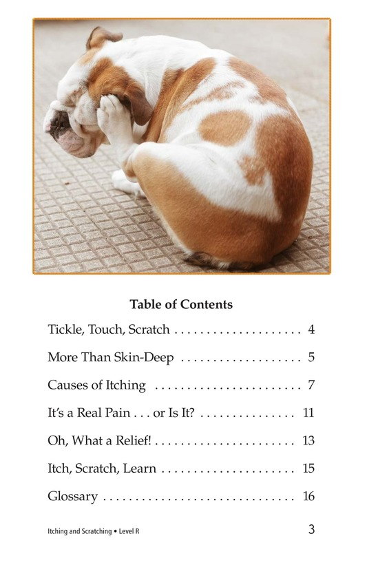 Book Preview For Itching and Scratching Page 3