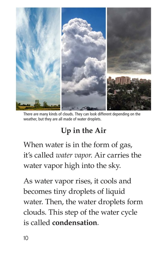 Book Preview For The Water Cycle Page 10