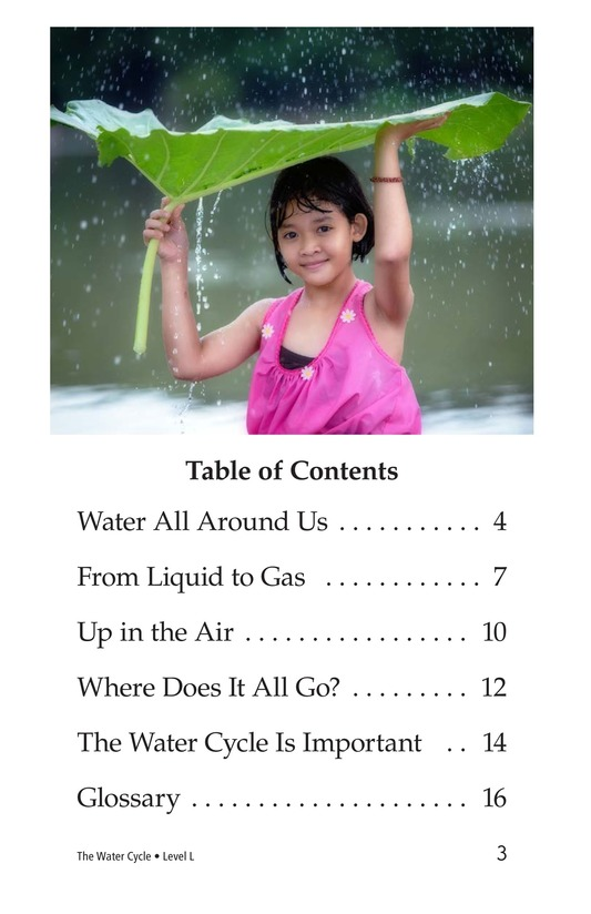 Book Preview For The Water Cycle Page 3