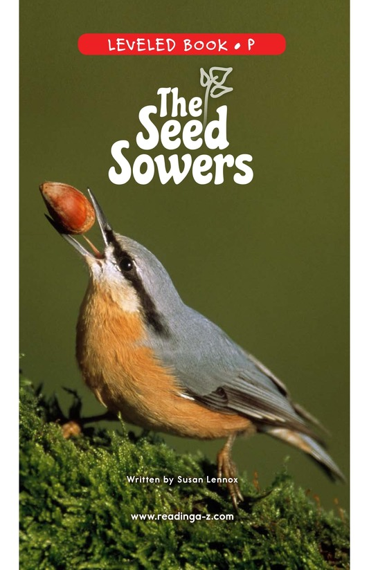 Book Preview For The Seed Sowers Page 0