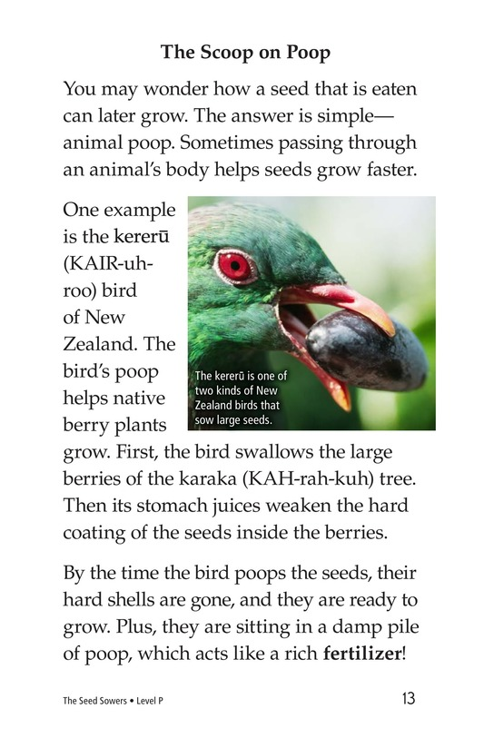Book Preview For The Seed Sowers Page 13