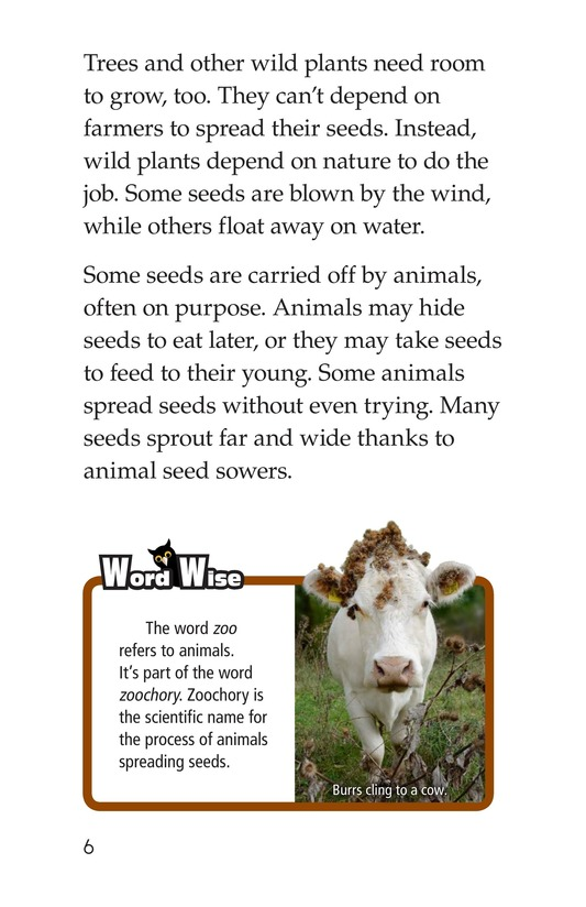Book Preview For The Seed Sowers Page 6