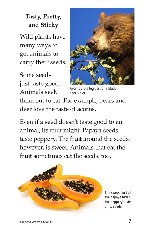 Book Preview For The Seed Sowers Page 7