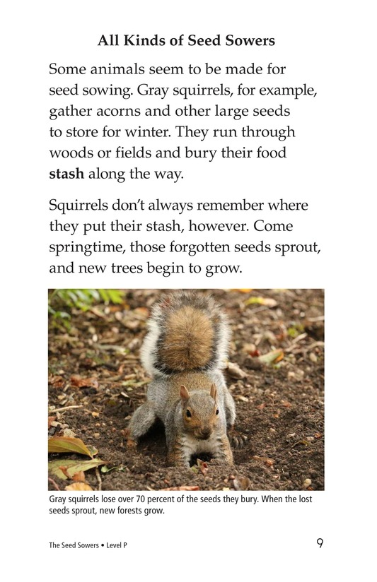 Book Preview For The Seed Sowers Page 9