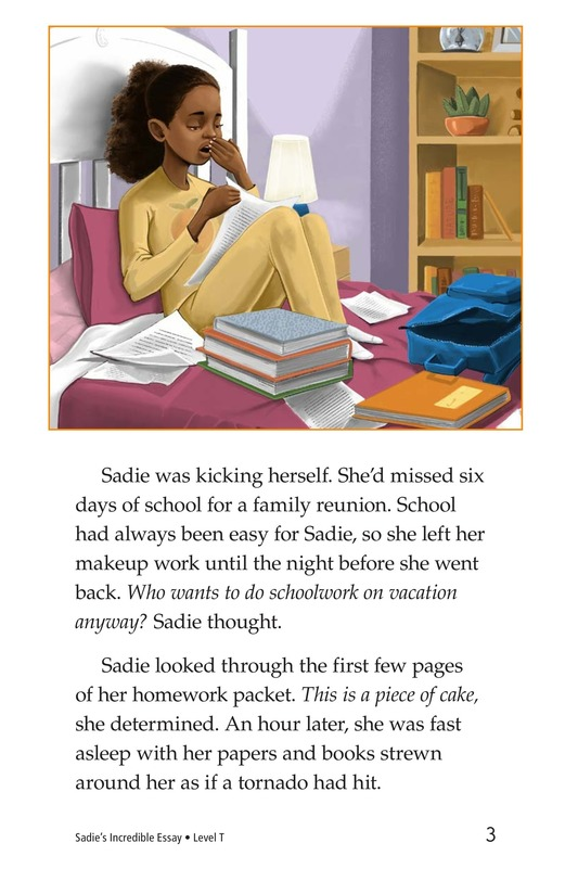 Book Preview For Sadie's Incredible Essay Page 3