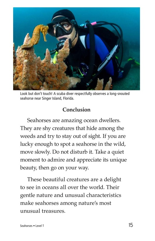 Book Preview For Seahorses Page 15