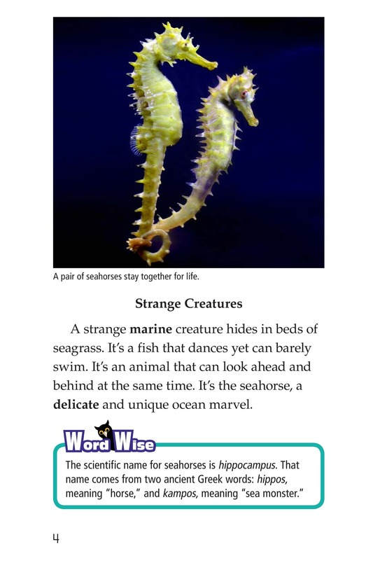 Book Preview For Seahorses Page 4