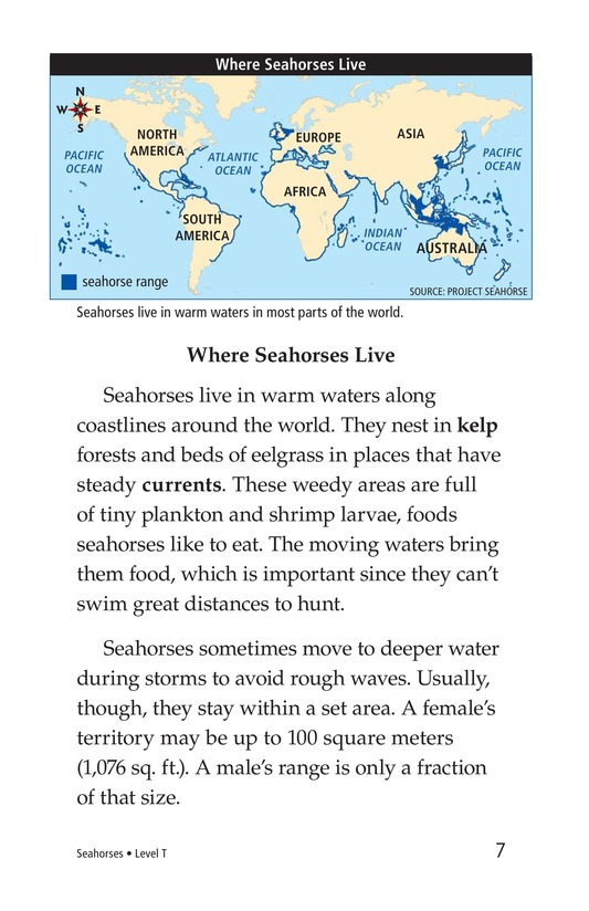 Book Preview For Seahorses Page 7