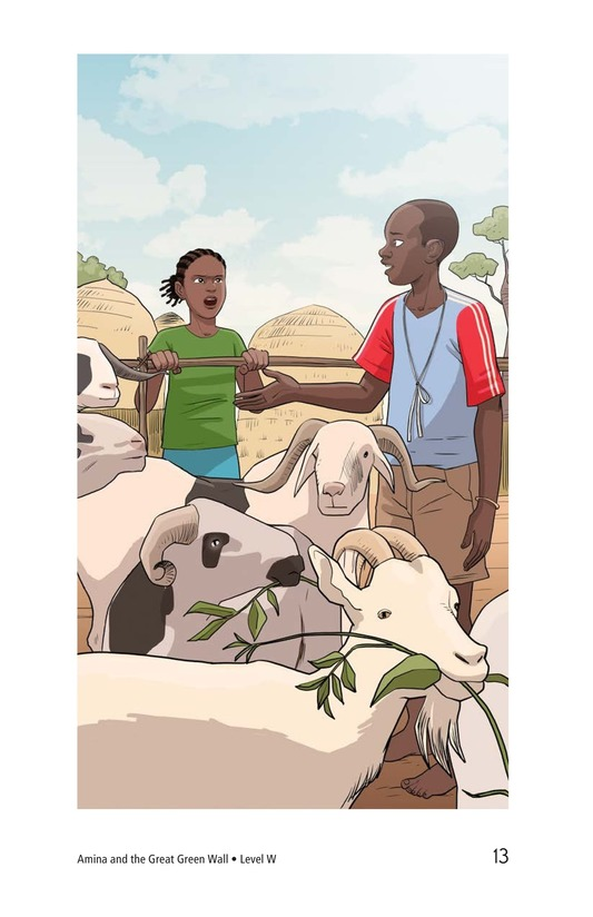 Book Preview For Amina and the Great Green Wall Page 13