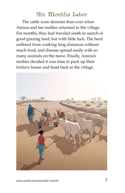 Book Preview For Amina and the Great Green Wall Page 7