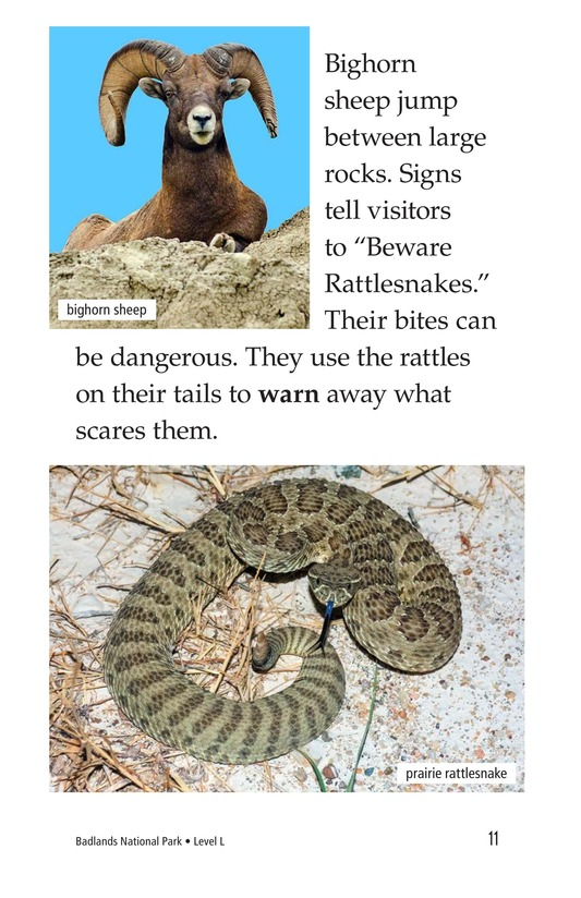 Book Preview For Badlands National Park Page 11