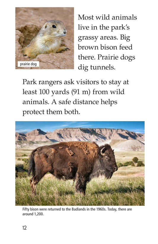 Book Preview For Badlands National Park Page 12