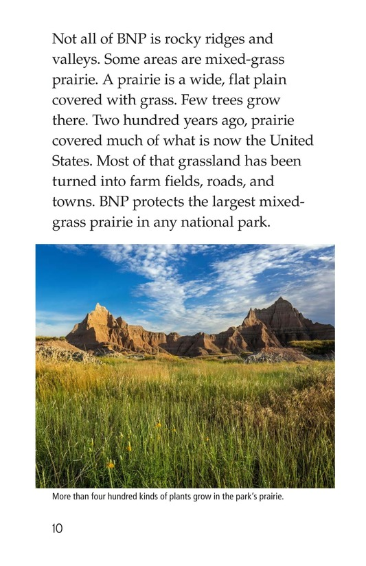 Book Preview For Badlands National Park Page 10