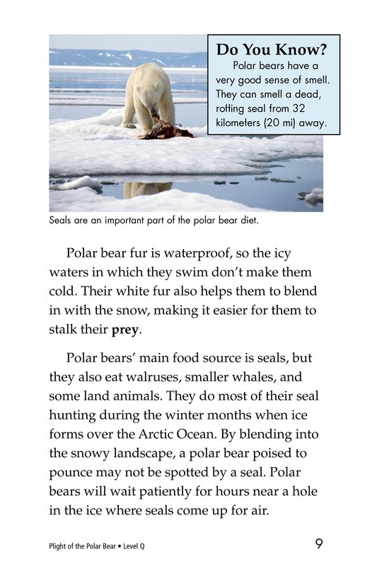 Book Preview For Plight of the Polar Bear Page 3