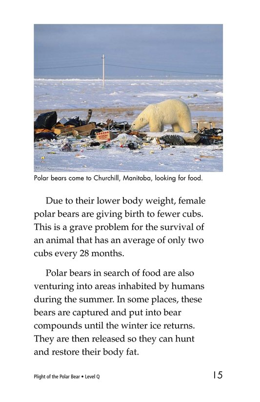 Book Preview For Plight of the Polar Bear Page 9