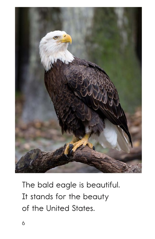 Book Preview For The Bald Eagle Page 6