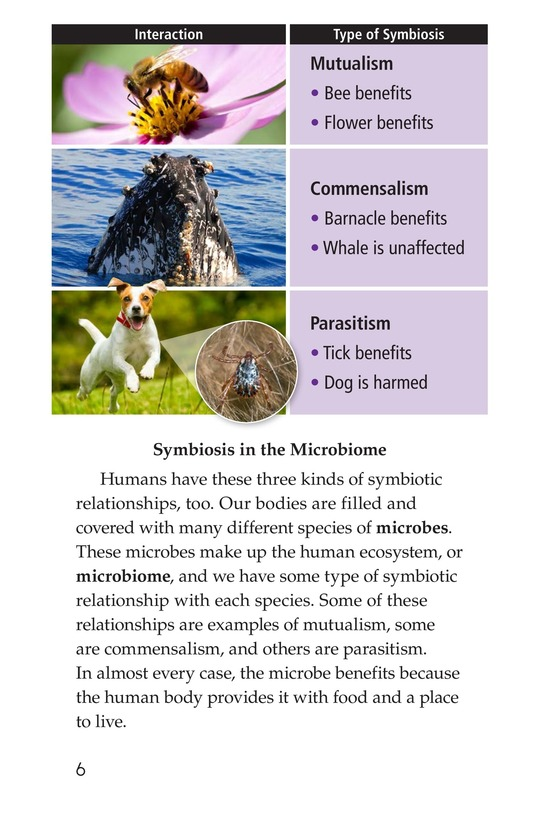 Book Preview For Microbes: The Good, the Bad, and the Ugly Page 6