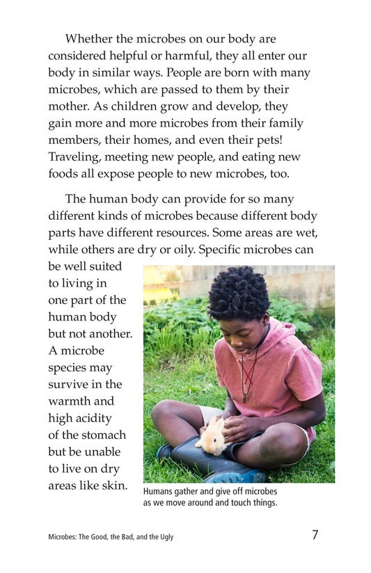 Book Preview For Microbes: The Good, the Bad, and the Ugly Page 7
