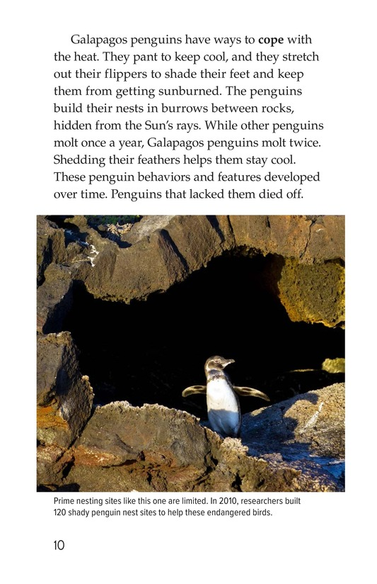 Book Preview For Amazing Animal Adaptations Page 10