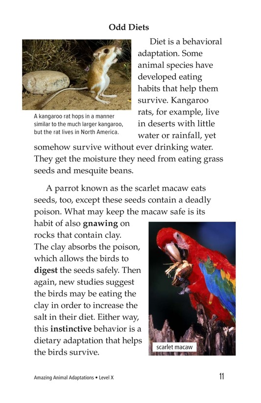Book Preview For Amazing Animal Adaptations Page 11
